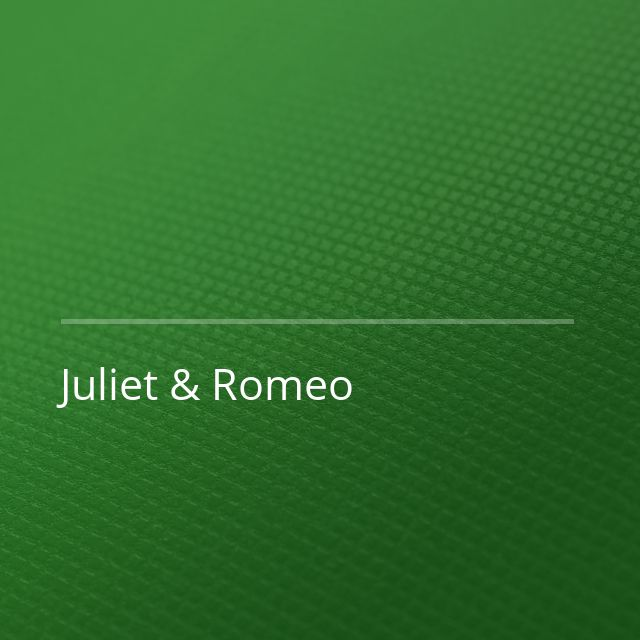 Martin Solveig/Roy Woods - Juliet & Romeo (Fabio Neural Remix)